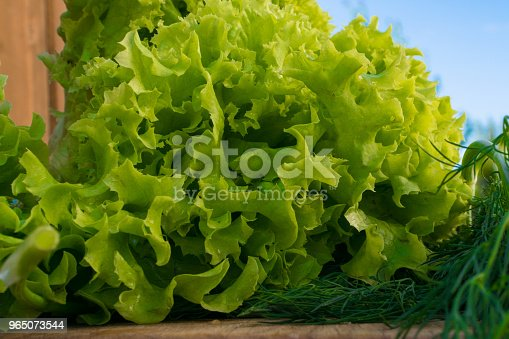 Fresh Green Salad And Dill On Wood Background - Stockowe zdjęcia i więcej obrazów Ciąć