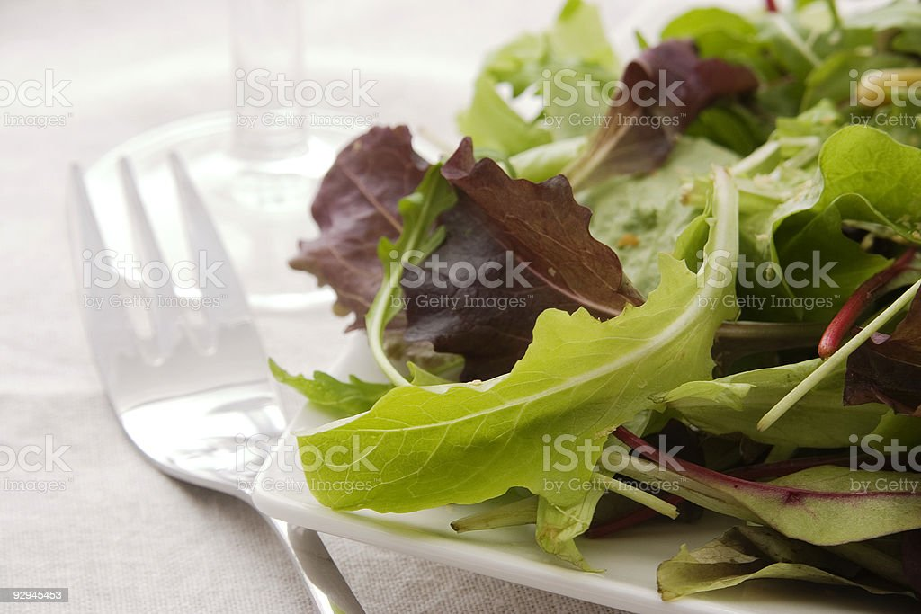Fresh green salad royalty-free stock photo