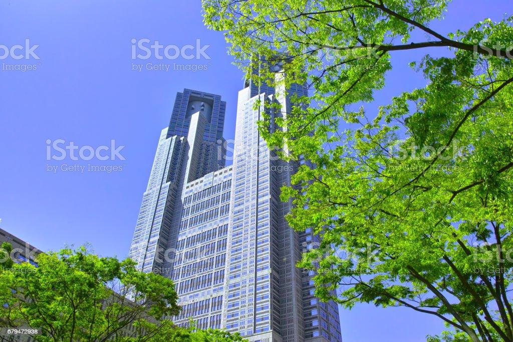 新鮮的綠色新宿東京政府大樓 免版稅 stock photo