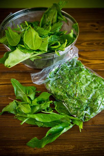 新鮮的綠色索勒在真空袋,在一個捲軸圖像檔