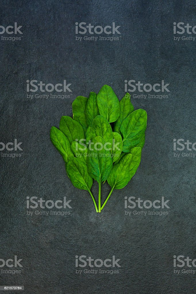 Fresh green spinach leaves isolated on gray slate stone background photo libre de droits