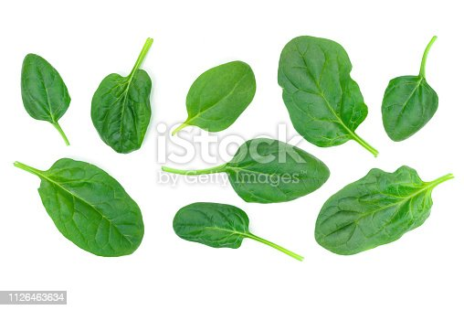 Group of spinach leaves isolated on white background in close-up