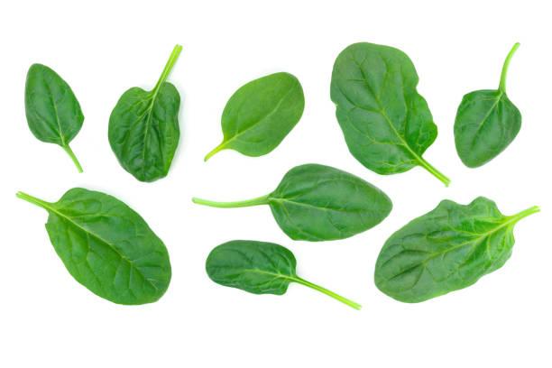 fresh green spinach - szpinak zdjęcia i obrazy z banku zdjęć