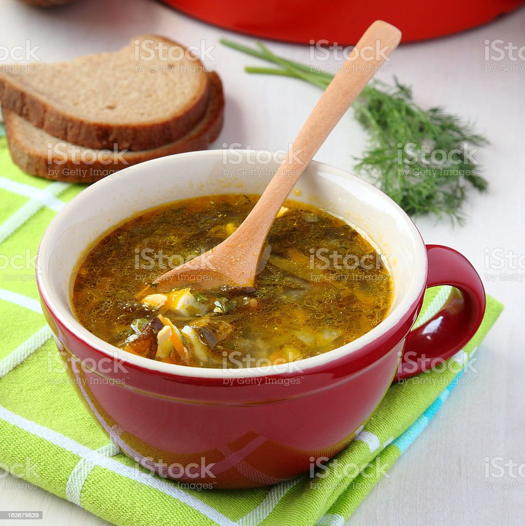 Fresh  green vegetable soup in the red bowl royalty-free stock photo
