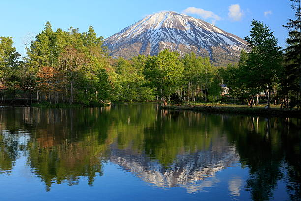Fresh green,pond and Mt.Yotei stock photo