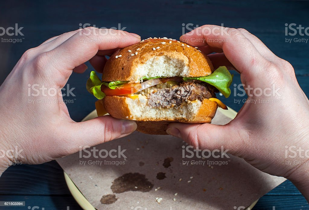 Fresh hamburger with vegetables in female hands Lizenzfreies stock-foto
