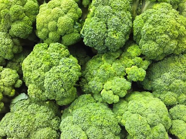 Fresh Harvested Broccoli stock photo