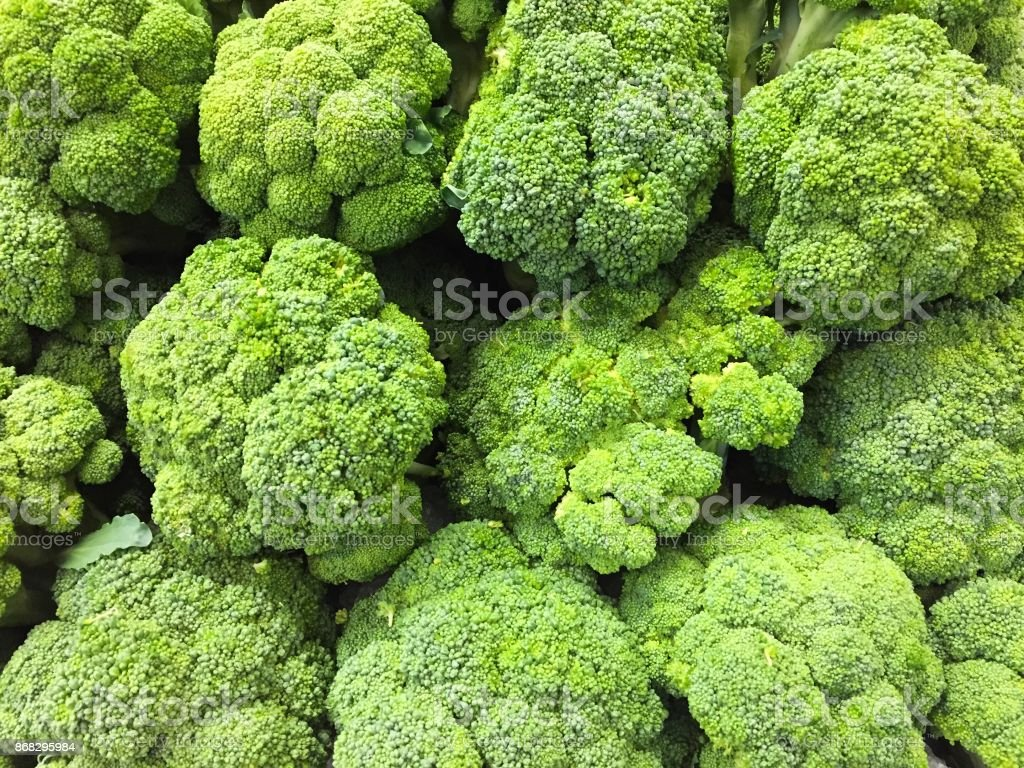 Fresh Harvested Broccoli stock photo