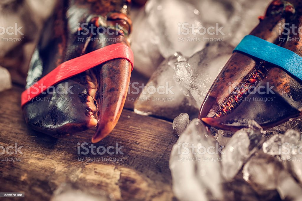 Fresh Healthy Lobster on Crushed Ice stock photo