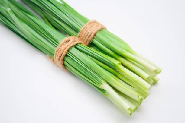 Fresh healthy organic green vegetable garlic chives, stock photo