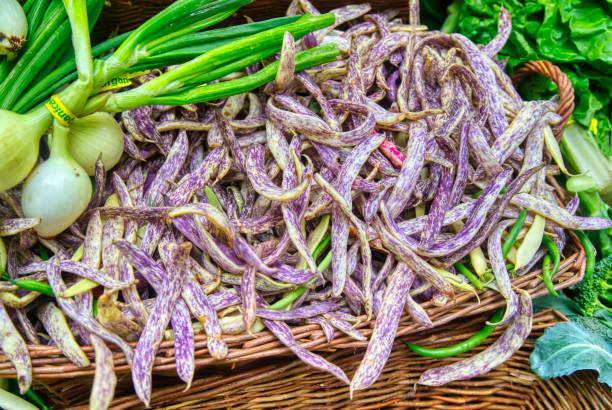 Fresh Heirloom Dragon Tongue Beans at the farmer's market stock photo
