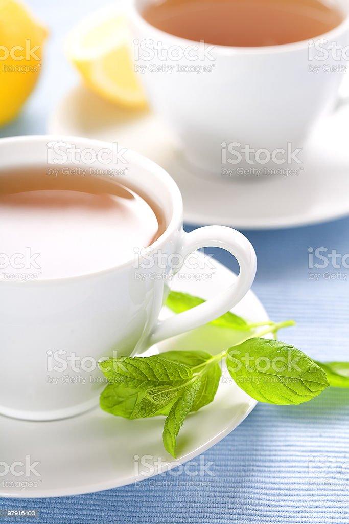 fresh herbal mint tea royalty-free stock photo