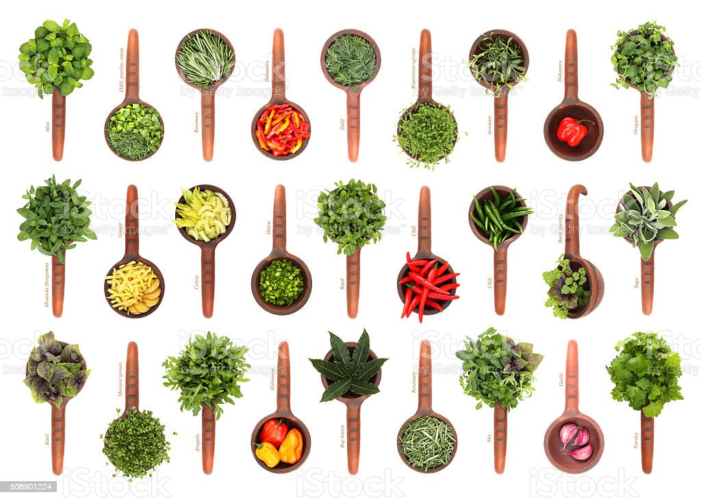 Fresh herbs and spices collection stock photo