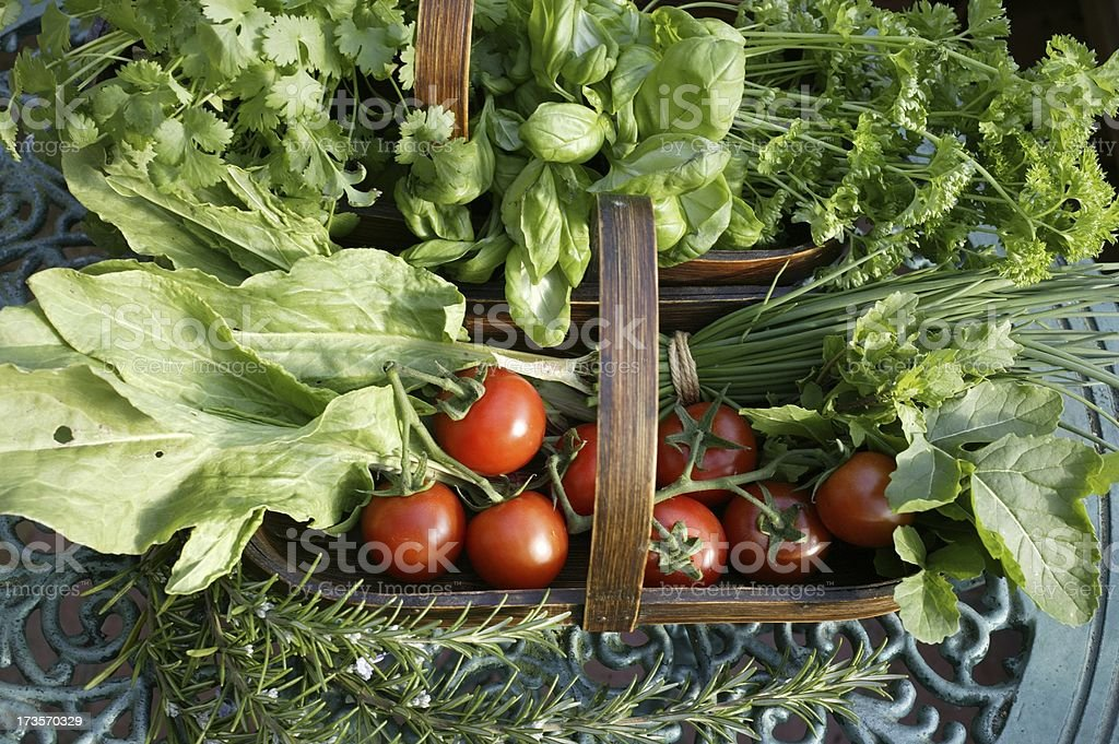 Fresh herbs and tomatoes royalty-free stock photo