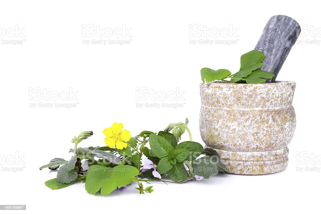 Fresh herbs collection isolated on white background royalty-free stock photo