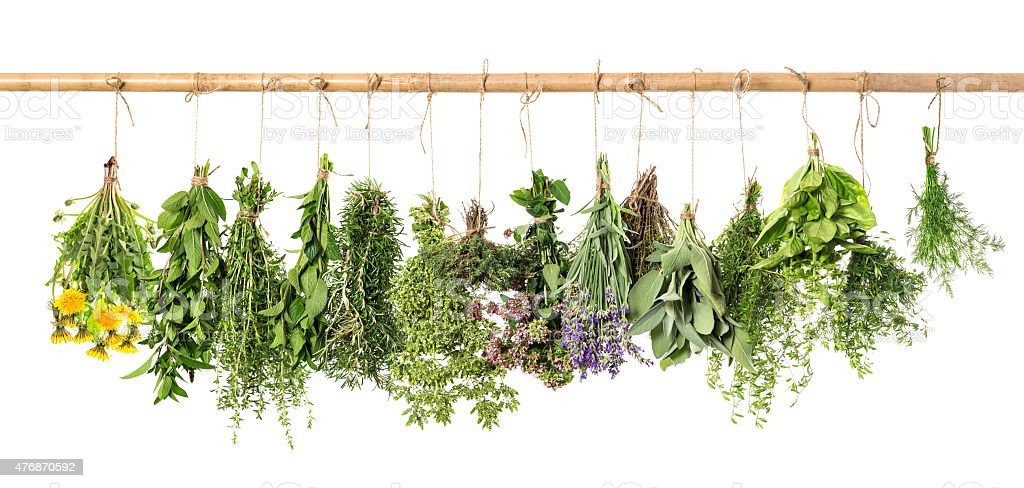 Fresh herbs hanging. Basil, rosemary, thyme, mint, dill, sage stock photo