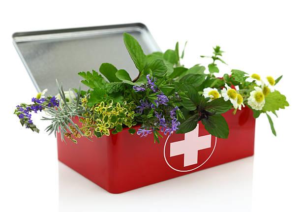 Fresh herbs in first aid kit picture id485371419?b=1&k=6&m=485371419&s=612x612&w=0&h=jtbw8xijqskq5cdg3lwjhzvftfqyhpmjsmtzwp iimq=