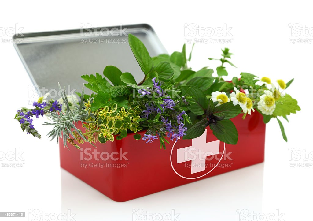 Fresh herbs in first aid kit stock photo