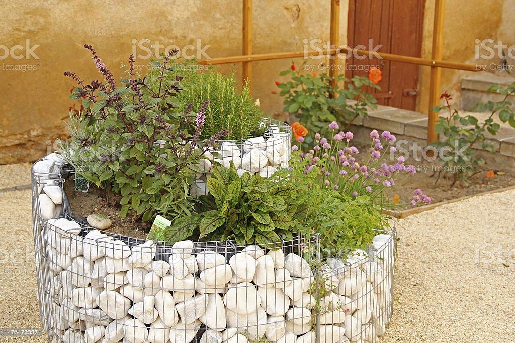 Fresh herbs on the terrace stock photo