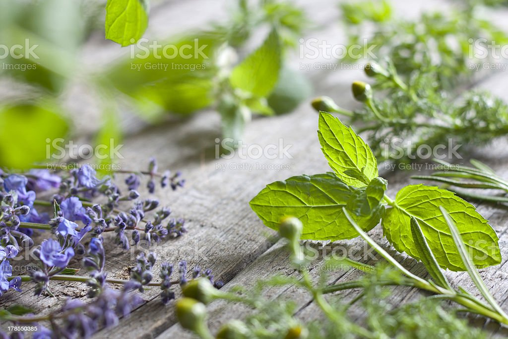 Fresh herbs on vintage boards stock photo