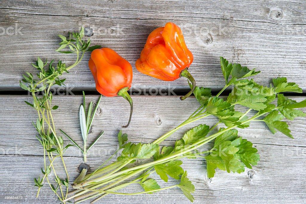 Fresh herbs on weathered wood stock photo