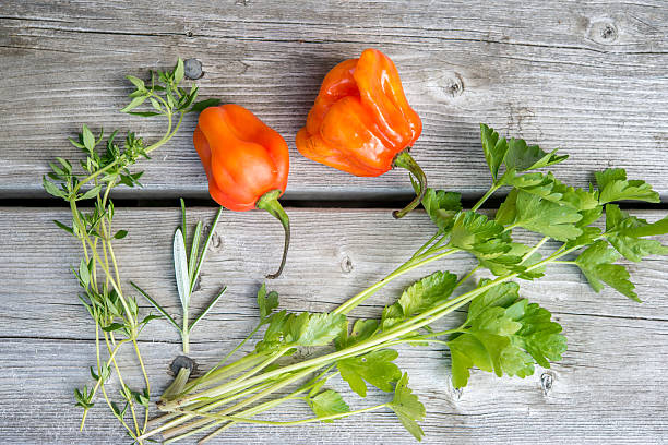 Fresh herbs on weathered wood Parsley, thyme, rosemary and Scotch bonnet on weathered wood planks. The idea of
