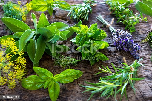istock Fresh herbs on wooden background 504069254
