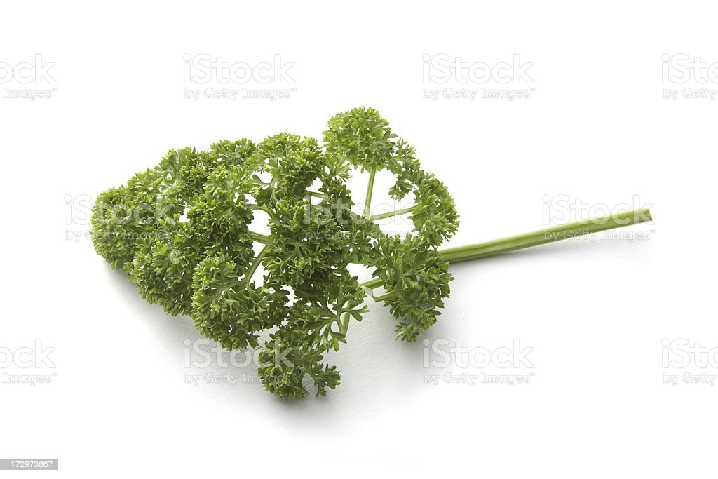 Fresh Herbs: Parsley royalty-free stock photo