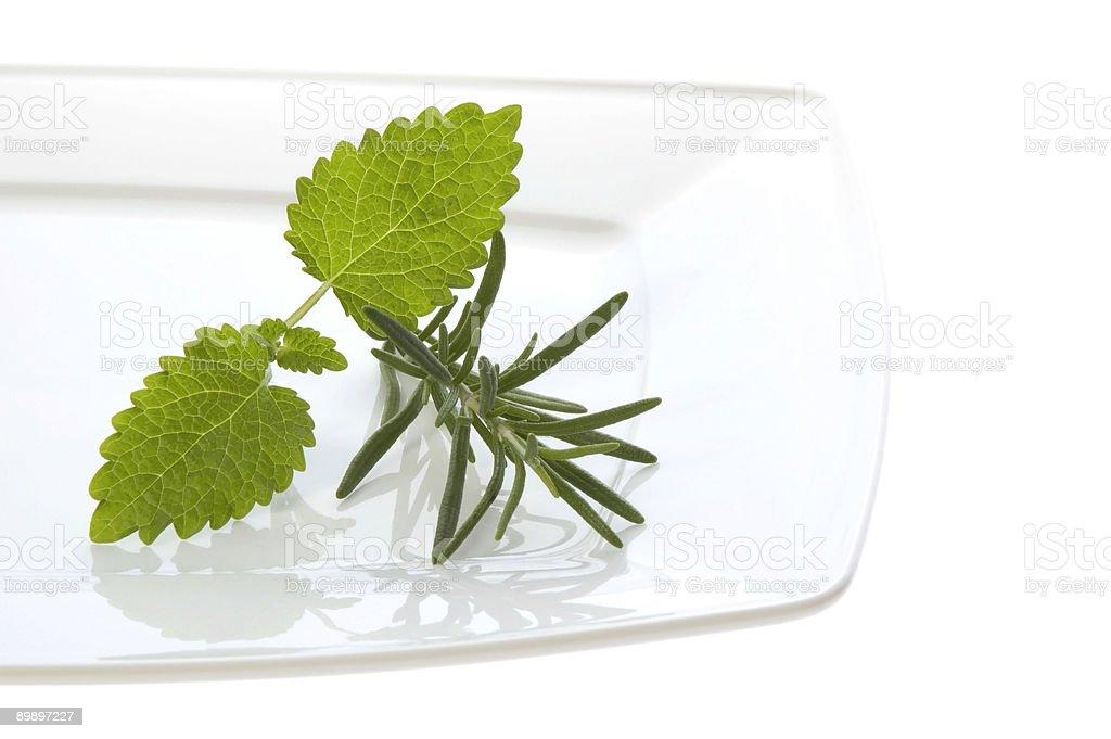 fresh herbs royalty-free stock photo