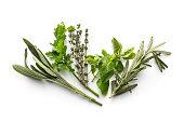 Fresh Herbs: Sage, Parsley, Thyme, Oregano and Rosemary Isolated on White Background