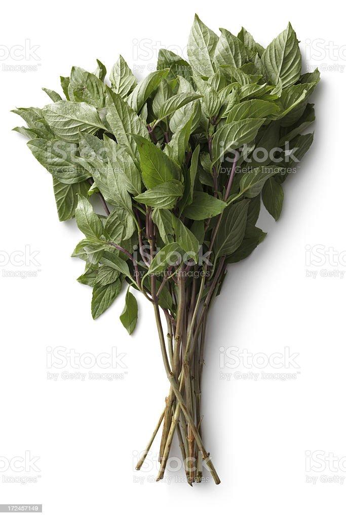 Fresh Herbs: Thai Basil stock photo