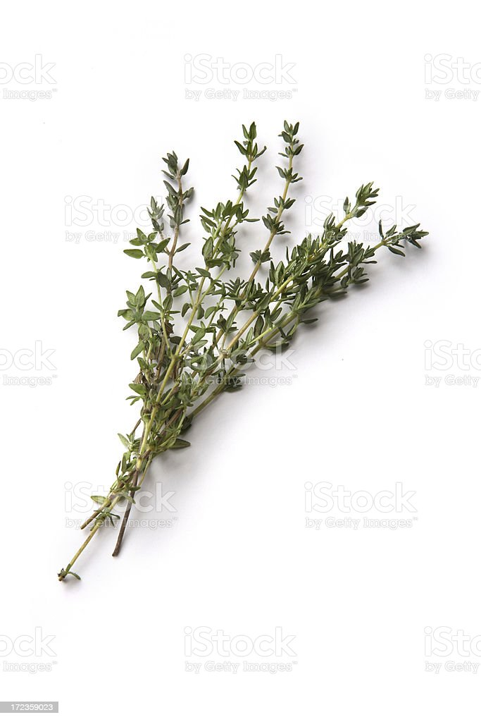 Fresh Herbs: Thyme stock photo