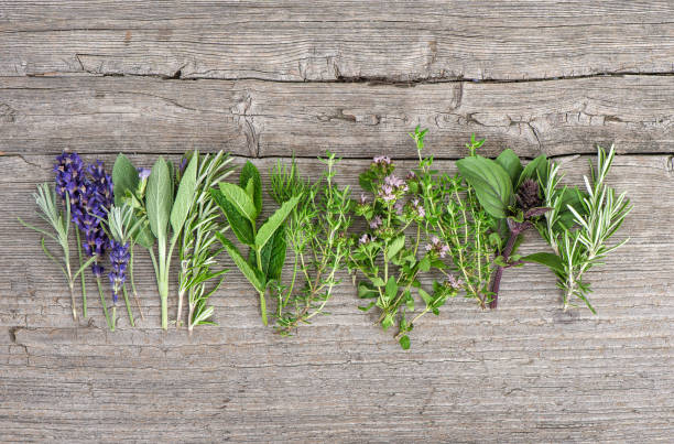 Fresh herbs wooden kitchen table Food background stock photo