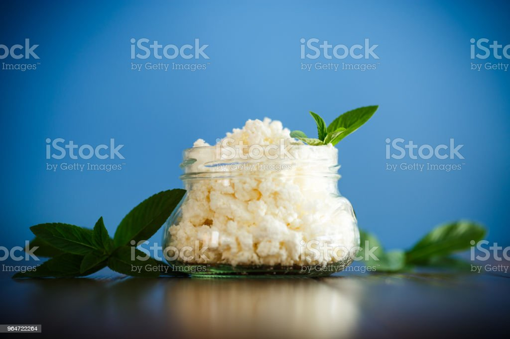 Fresh homemade cottage cheese in a glass jar royalty-free stock photo