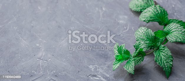 Fresh homemade green peppermint on a gray dark concrete table. Green leaves sprig of mint plant on a blue concrete background. Ecology concept, cooking healthy food. Copy space. Green mint. Spearmint.