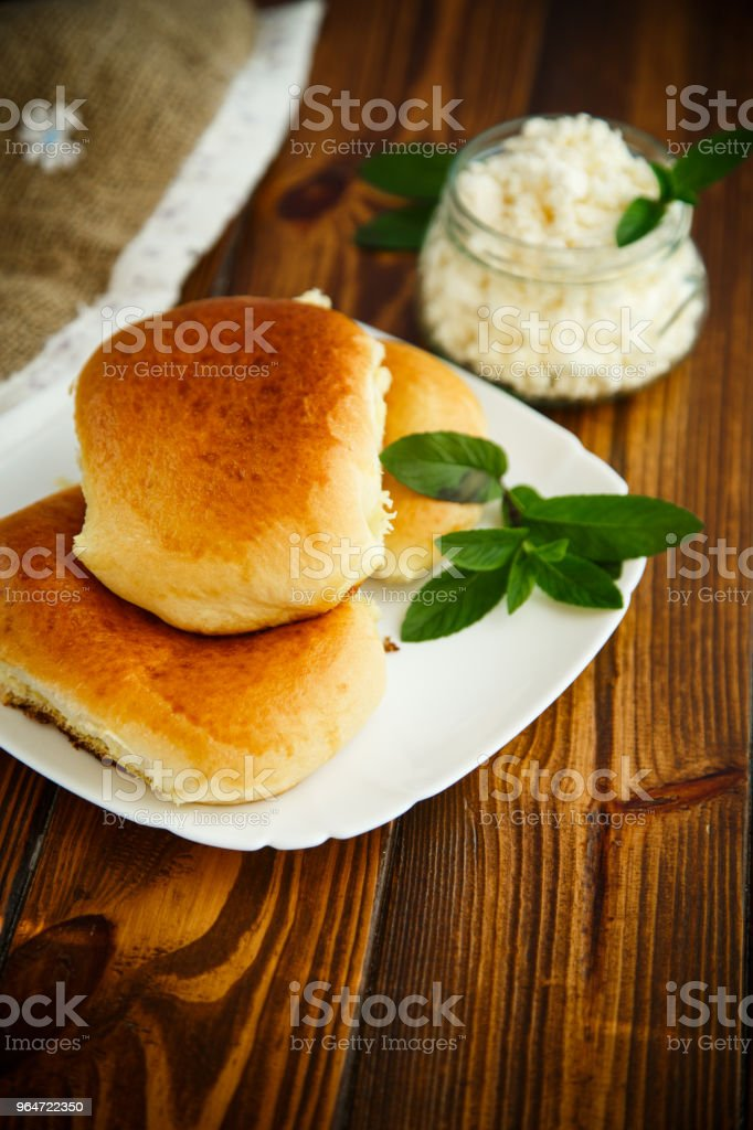 fresh homemade sweet pies with cottage cheese royalty-free stock photo