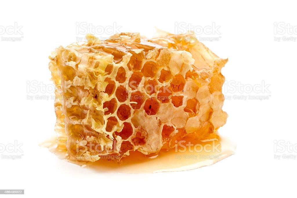 Frischer Honig combs – Foto