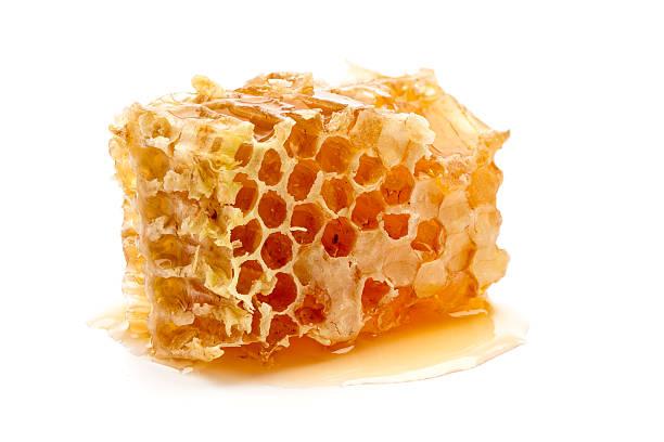 Fresh honey combs stock photo