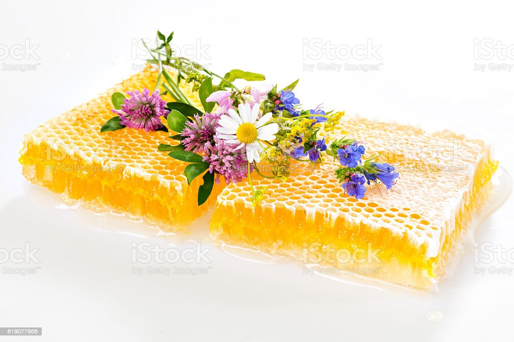 fresh honeycombs with flowers stock photo