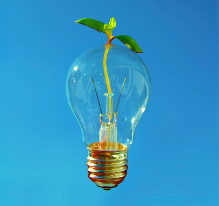 istock Fresh idea for healthy and sustainable development. Shiny Lightbulb with small plant coming through. 1085637010