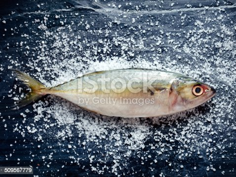 Fresh Indian mackerel with salt on stone background