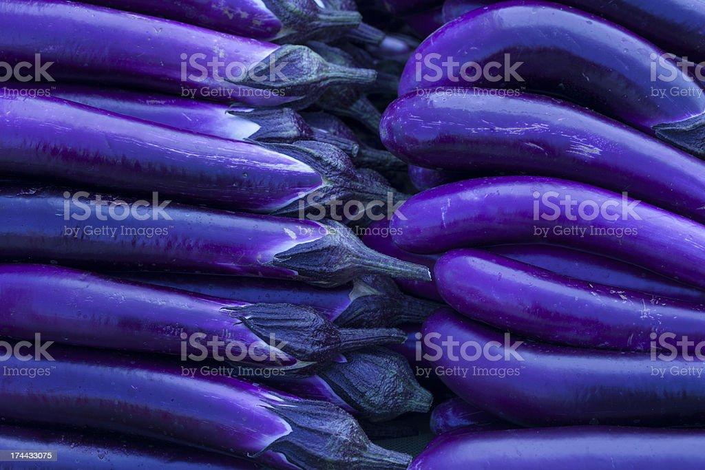 Fresh Japanese Eggplant royalty-free stock photo