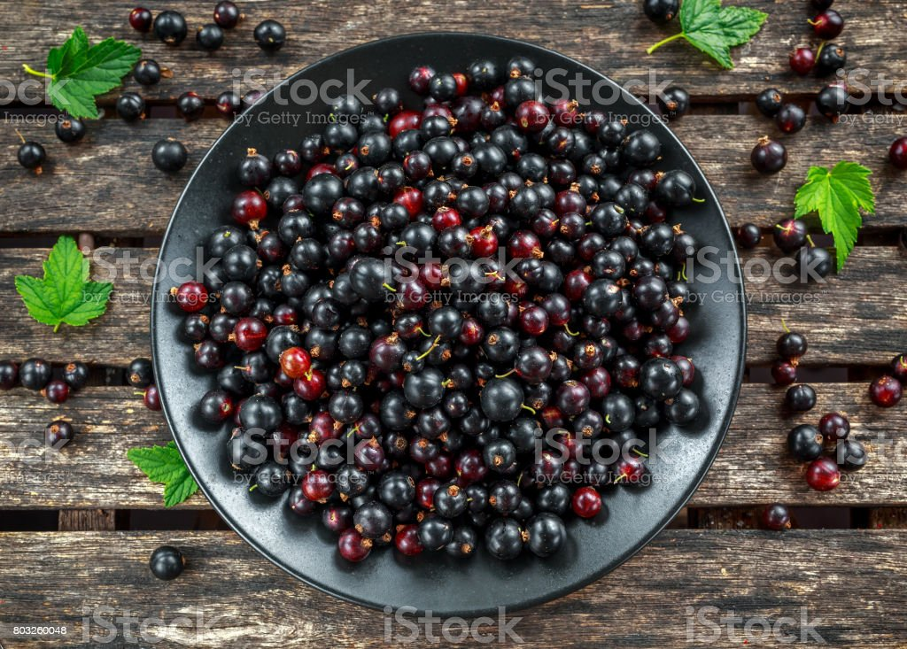 Fresh Juicy black currants in a plate on wooden rustic table stock photo