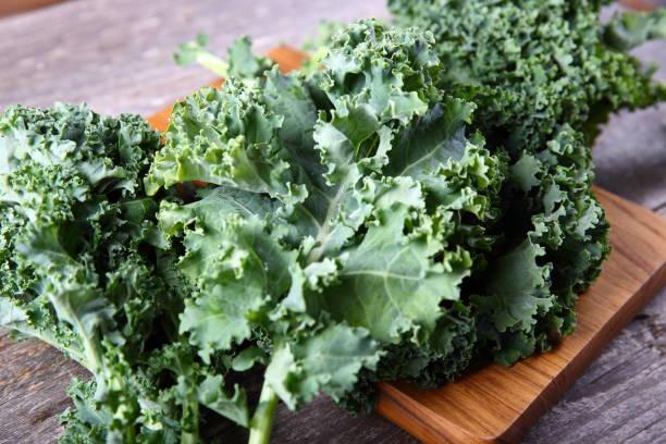 Fresh Kale Fresh Kale kale stock pictures, royalty-free photos & images