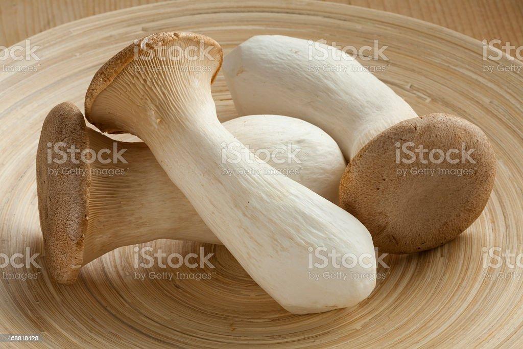 Fresh king oyster mushrooms stock photo