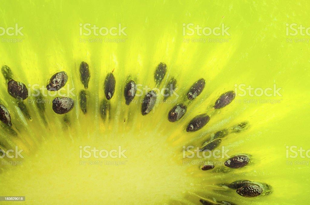 Fresh kiwi fruit bright macro phtoo royalty-free stock photo