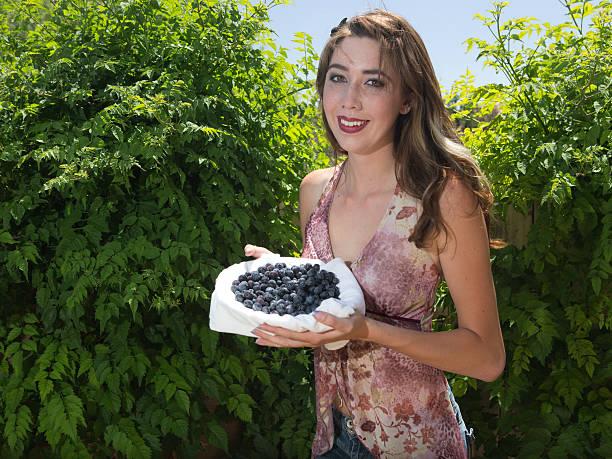 Fresh late spring blueberries stock photo