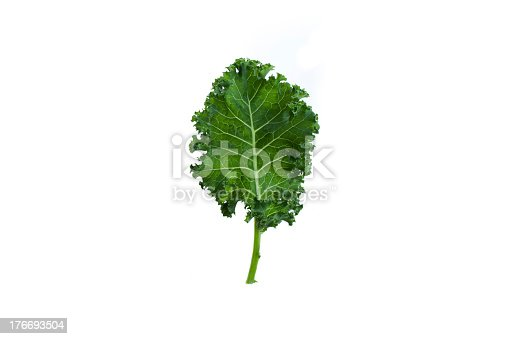 istock A fresh leaf of green kale on white background 176693504