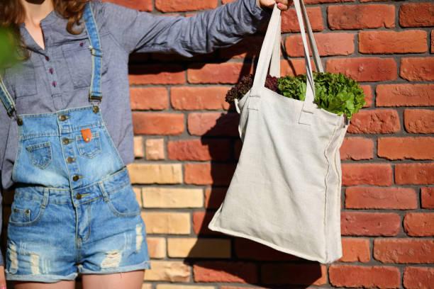fresh leaves lettuce in organic bag in woman hand - leinenhosen frauen stock-fotos und bilder