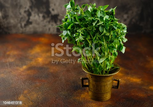 Fresh green leaves of basil on a old table